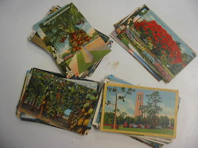 50 Older Florida Postcard Lot 7