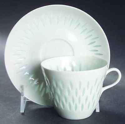 Arabia Of Finland RICE (GRAINS) Cup & Saucer 6678901
