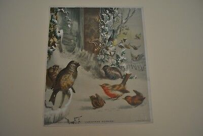1882 Litho Of Song Birds In Snow, Christmas Morning, House, Vines