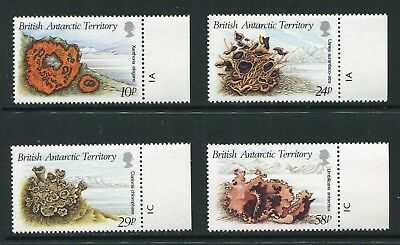 BAT 1989 Lichens Set of 4 Stamps SG167-170 MNH AS004
