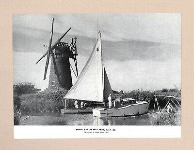 The  RIVER ANT & HOW HILL WINDMILL, NORFOLK  (1956 Photo Print)
