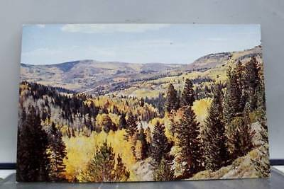 Utah UT Cedar Mountains Breaks Highway 14 Postcard Old Vintage Card View Post PC