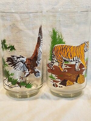 Two Rare Dunkin Donuts Endangered Species Eagle And Tiger Glasses