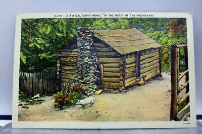Scenic Cabin in Mountains Postcard Old Vintage Card View Standard Souvenir Post