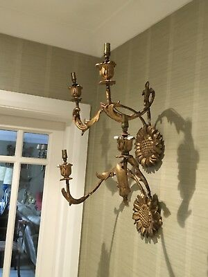 Unusual  Pair Of Antique Gilt Wood Sunflower Wall Light, Sconces