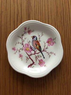 Royal Worcester Palissy Plate