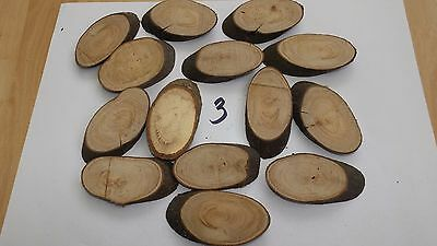 14 Natural Log Slice Laurel Tree Bark Wedding Table Decoration Centerpiece
