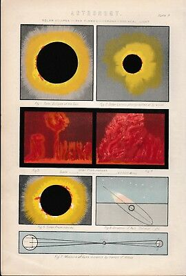 c 1899 Antique Astronomy Map of Solar Eclipse Red Flames Corona Zodiacal Light
