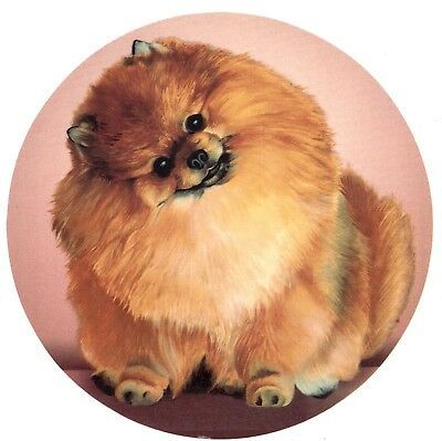 "1 Pomeranian Dog 7-1/2"" Waterslide Ceramic Decal Xx"