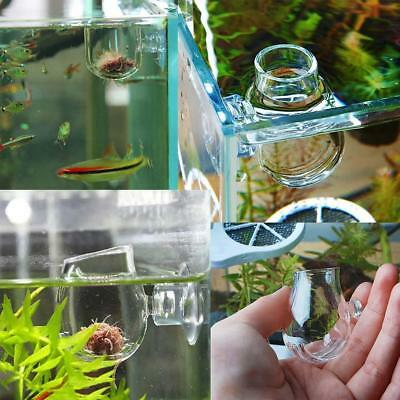 Aquarium/Fish Tank Holder Aquatic Plant Acrylic Cup Pot Container Pet Supply