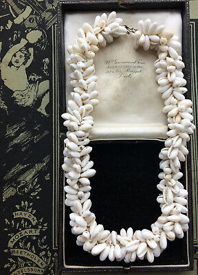 Rare Antique Victorian Tiny Sea Shell Necklace African Trade Beads Collector