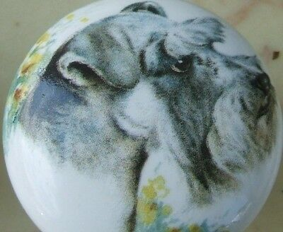Cabinet Knob Schnauzer Monica DOG knobs