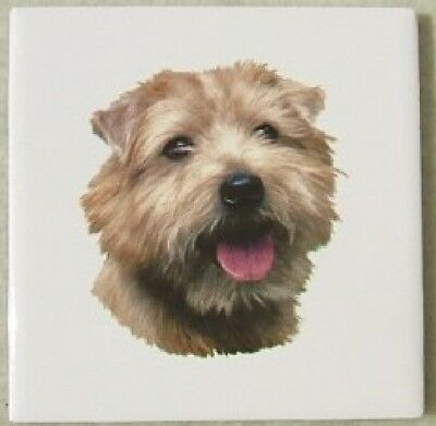 Ceramic Tile Norfolk Terrier DOG