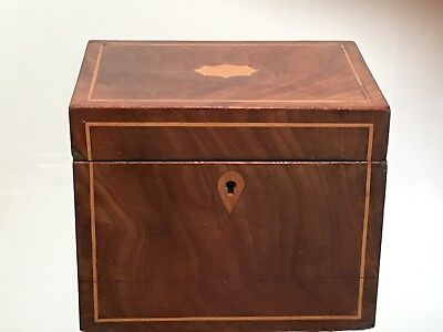 Antique Regency  Mahogany Single Tea Caddy With Box Inlay ,Lovely Piece
