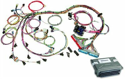 Painless Performance Products 60713 EFI Wiring Harness 1998-2004 GM LS1/LS6 With