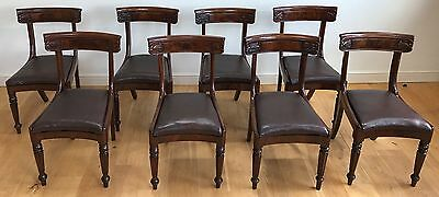 Set of 8 Original Antique William IV Mahogany Dining Chairs Leather Seats C1835