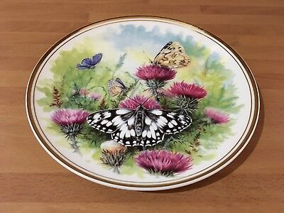 royal vale bone china plate with lovely butterfly pattern