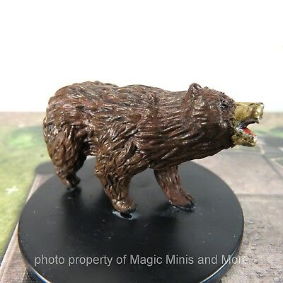 Waterdeep Dragon Heist ~ BROWN BEAR #25 Icons of the Realms D&D large miniature