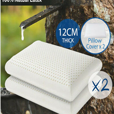 2x 100% NATURAL TALALAY LATEX PILLOW Breathable Sleeping Support W/Stretch Cover
