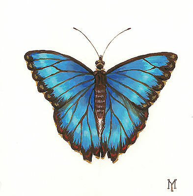 8x10 PRINT OF PAINTING RYTA BLUE MORPHO BUTTERFLY ANTHROPOD REALISM WATERCOLOR
