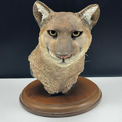 MOUNTAIN LION COUGAR BUST SIMPKINS statue sculpture art figurine cat puma head