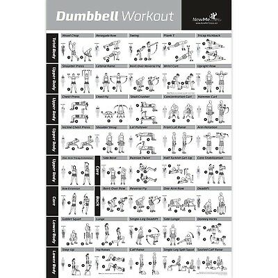NewMe Fitness Dumbbell Workout Exercise Poster - NOW LAMINATED - Strength Tra...