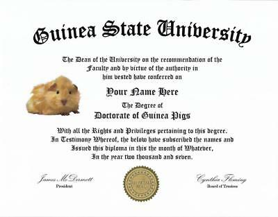 Beautiful Diploma for a Guinea Pig lover,..great conversation piece, great gift!
