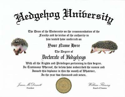 Beautiful Diploma for a Hedgehog lover,..great conversation piece, great gift!