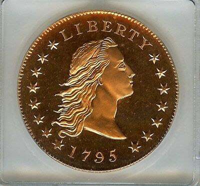 1795 (2004) Flowing Hair Copper Pattern Dollar  Icg Pr67 Limited Edition!