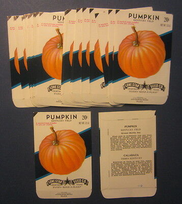 Wholesale Lot of 25 Old Vintage PUMPKIN - Kentucky Field - SEED PACKETS - EMPTY