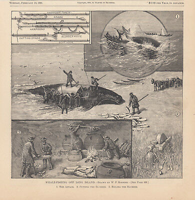 Long Island New York Whaling Whale Fishermen Whalers Antique Art Print 1885