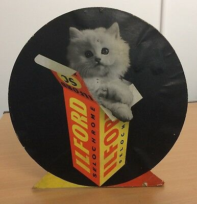 ORIGINAL 1950s ILFORD CAMERA SHOP ADVERTISING DISPLAY WITH CAT 325mm x 325mm