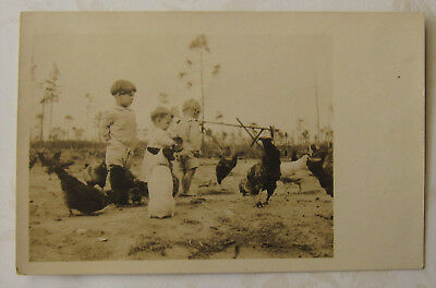 Vintage Postcard RPPC Jack Russell Terrier Chickens Children photo UNPOSTED