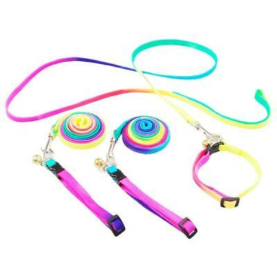 Dog Harness Pet Dog Traction Rope Chain Cute Rainbow-colored Chest Leash BS
