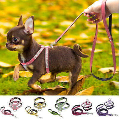 Soft Mesh Dog Harness No Pull Comfort Padded For Small Pet Cat And Puppy