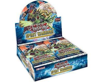 Spirit Warriors Booster Display - Englisch - 1st Edition