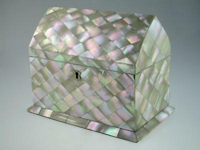 Rare Large Antique 19th Century Mother Of Pearl Tea Caddy Circa 1850