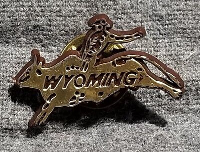 LMH Pin Pinback Tie Lapel WYOMING Cowboy BULL RIDING Bronco BUSTING Bucking WY