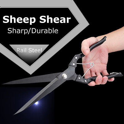 Sheep shears Hand clippers shear clipper 30 cm - 12 Inch Long