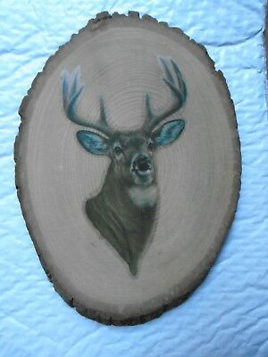 New Rustic White tail DEER Picture Sign Cabin Lodge Lake Log Live edge slice