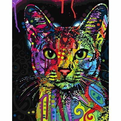 Frameless Abstract Colorful Cat DIY Painting By Numbers