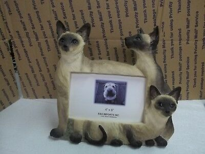 "Siamese Cat Picture Frame for a 4"" X 6"" Photo"
