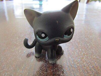 Rare Little Petshop / Chat / Cat /  Europeen / European Cat / Lps 994 !!!