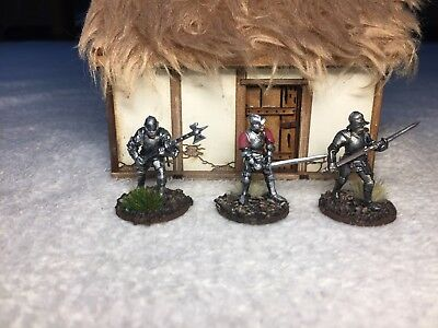 ***Perry Miniatures: 28mm (1:56) Ritter bemalt***