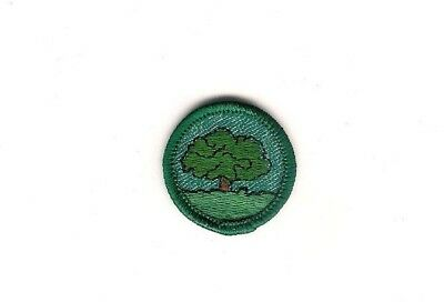 Girl Scout Patch Tree Finder Proficiency Badge 1955-61
