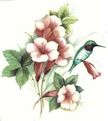 Hummingbird Iris Flower Select-A-Size Waterslide Ceramic Decals Xx