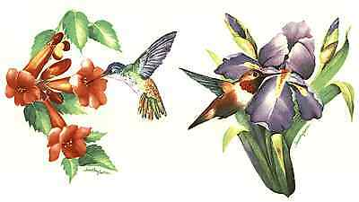 "2 Hummingbird Iris Trumpet Flower 7""  Waterslide Ceramic Decals Xx"