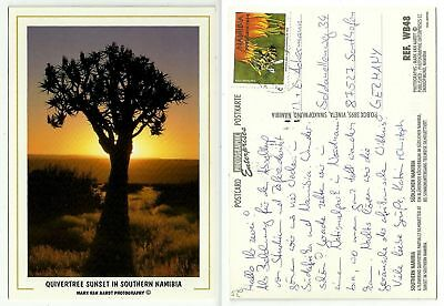 AK 893 - Quivertree Sunset in Southern Namibia, gelaufen 200?