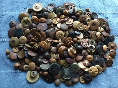 Almost 1 Lb Pound Vintage Vegetable Ivory Buttons - Great Old Lot