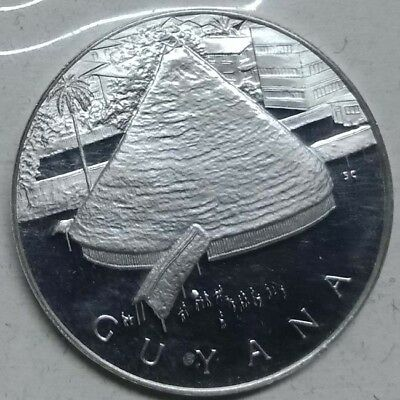 Guyana United Nations Silver Proof Medallion Medal Coin 32mm